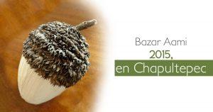 Bazar Aami 2015, en Chapultepec