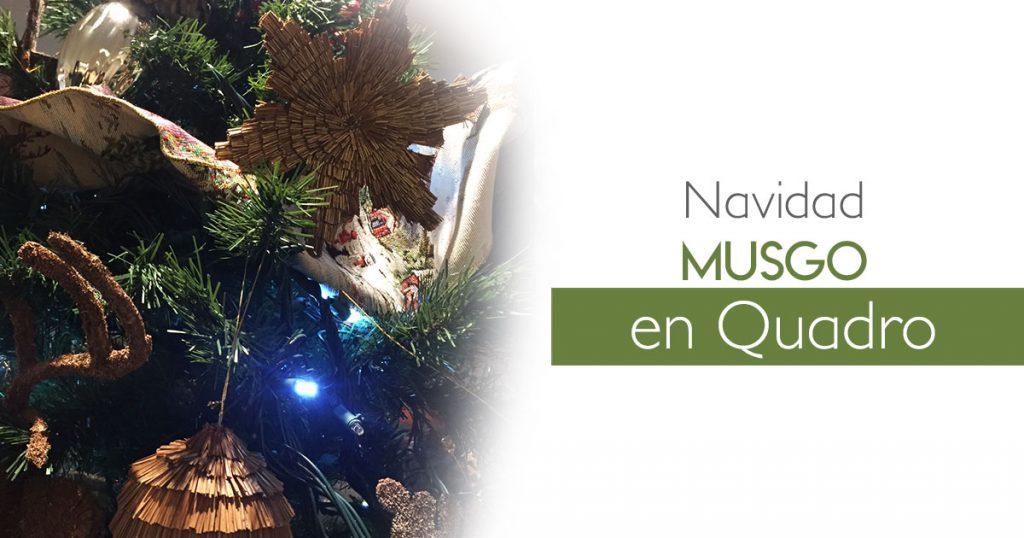 Navidad Musgo en Quadro